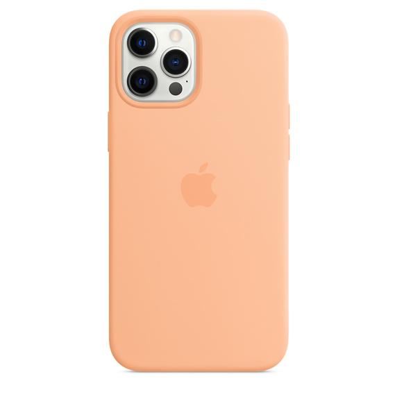 MS형 iPhone 12 Pro Max 실리콘 케이스 - 캔털루프 (MK073FE/A)